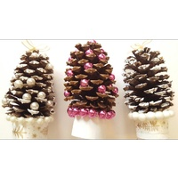Pinecones & Pearls - Fragrance Oil