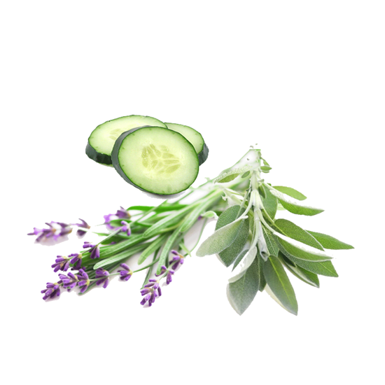 Lavender Cucumber Sage - Reed Diffuser Oil