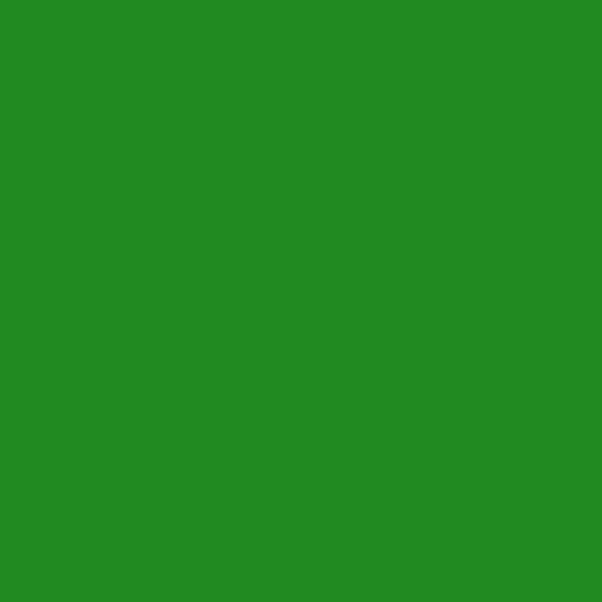 Dye Chips - Forest Green (x10)