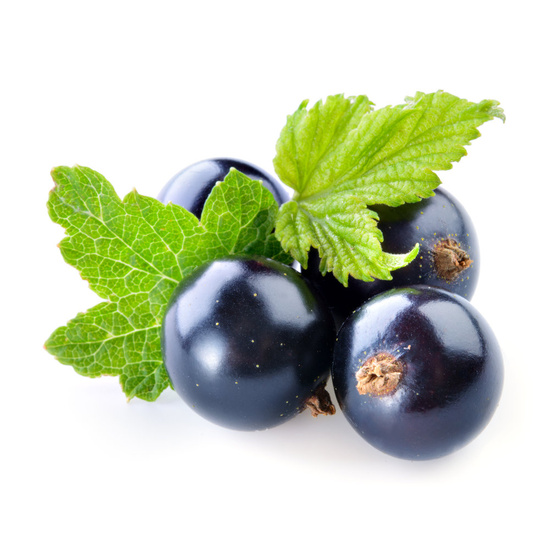 Blackcurrant & Plum - Fragrance Oil