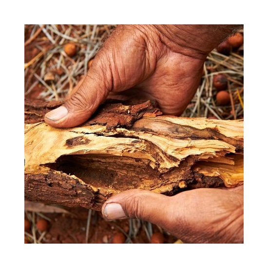 Australian Sandalwood - Fragrance Oil