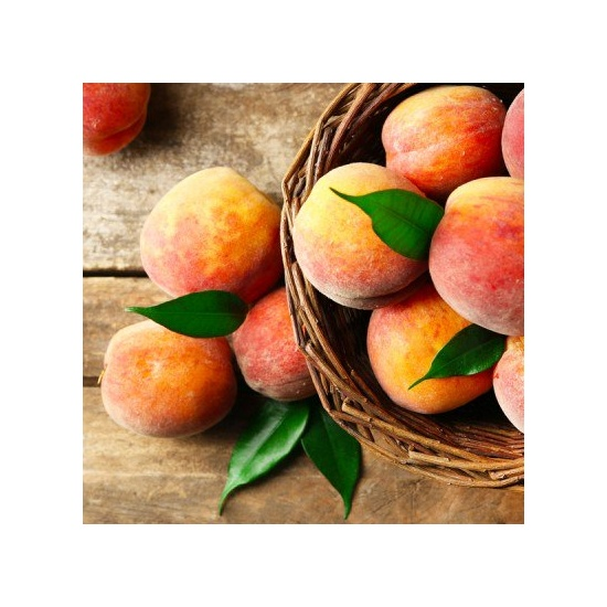 Cedar & Stone Fruit - Fragrance Oil