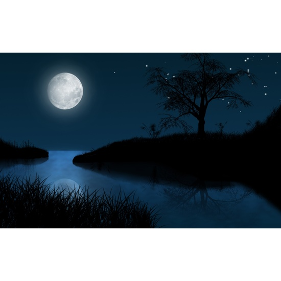 Moonlit Night - Fragrance Oil