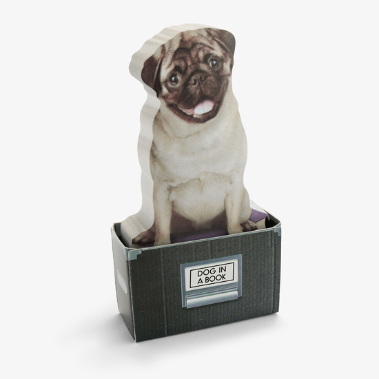 Dog In A Box Sticky Notes (150 sheets)
